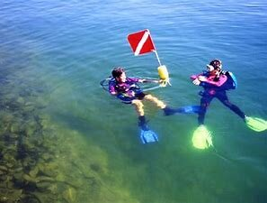 Spearfishing/scuba diving - clear lake